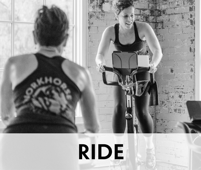 Workhorse Fitness and Yoga Ride